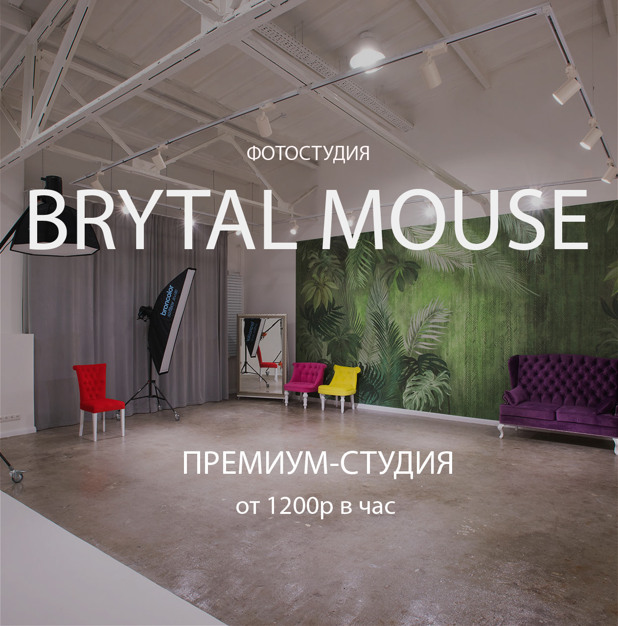Brytal Mouse