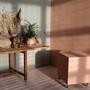 Fenix studio